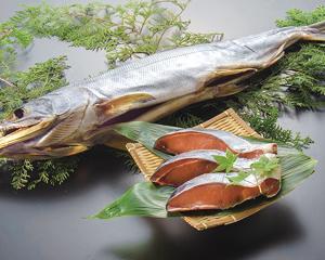 kobari